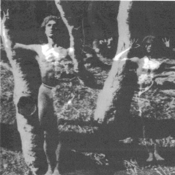 Von Bäumen und Menschen .1